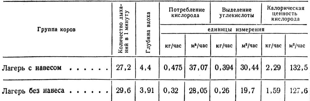 """"""",""""vet5.narod.ru"""